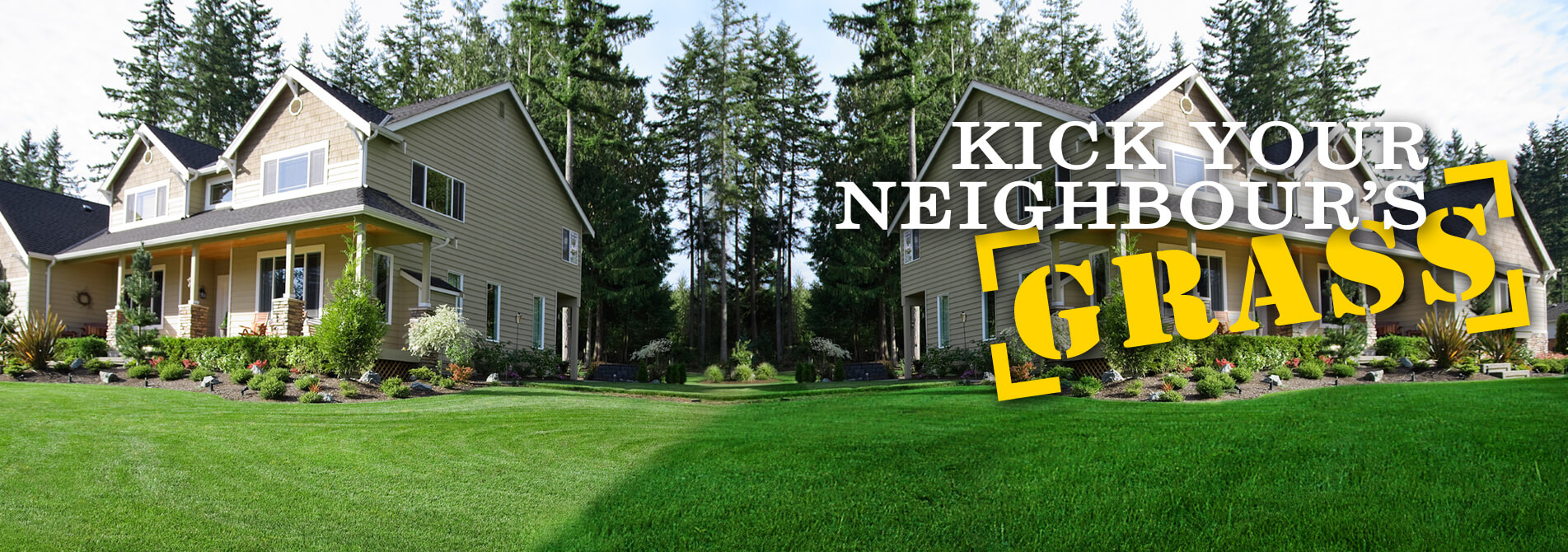 46 Lawn Kick Your Neighbours Grass